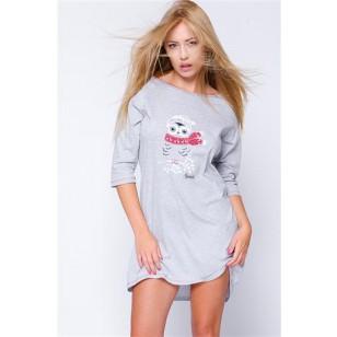 Naktiniai Snowy Owl